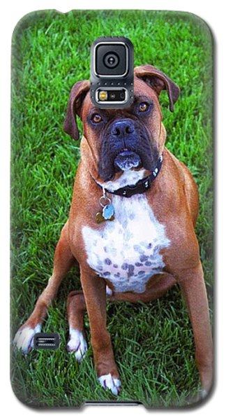 Rocco Galaxy S5 Case