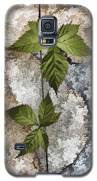 Rock And Vine Galaxy S5 Case