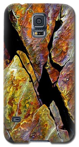 Rock Art 17 Galaxy S5 Case