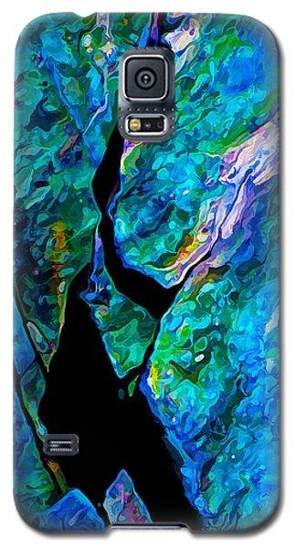 Rock Art 18 Galaxy S5 Case