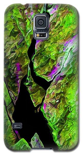 Rock Art 20 Galaxy S5 Case