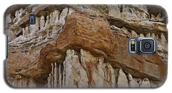 Rock Family Galaxy S5 Case