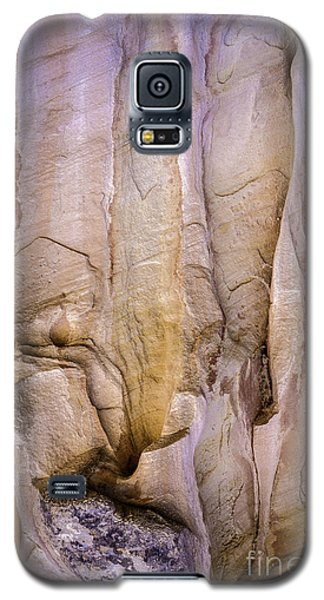 Rock Formation Galaxy S5 Case