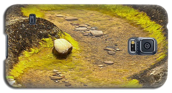 Rock Pool Galaxy S5 Case