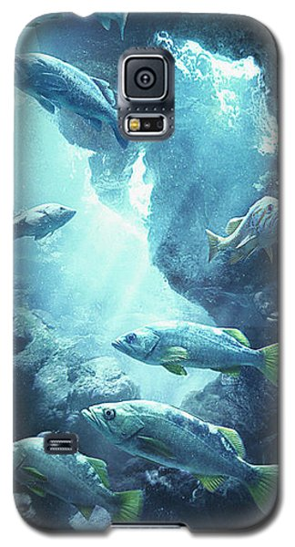 Rockfish Sanctuary Galaxy S5 Case by Javier Lazo