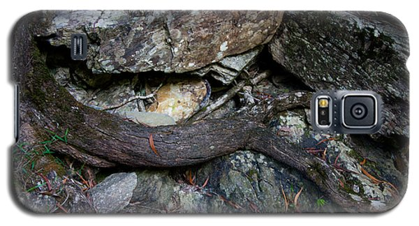 Galaxy S5 Case featuring the photograph Rocks And Roots by Carole Hinding