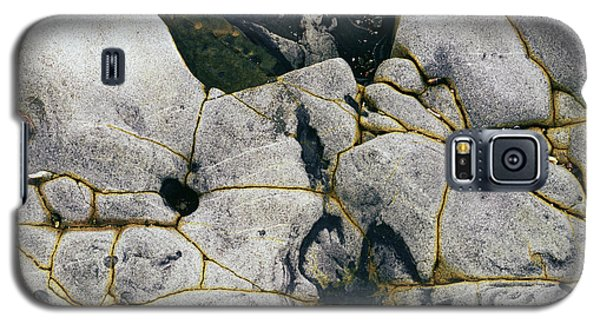 Rocks At Point Lobos C2014 Galaxy S5 Case by Paul Ashby