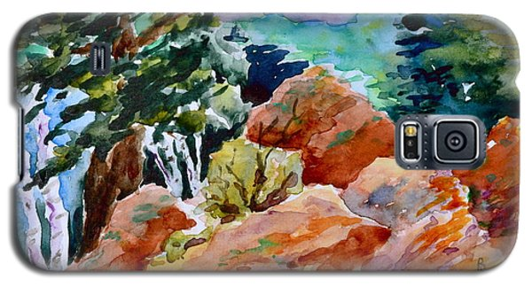 Rocks Near Red Feather Galaxy S5 Case