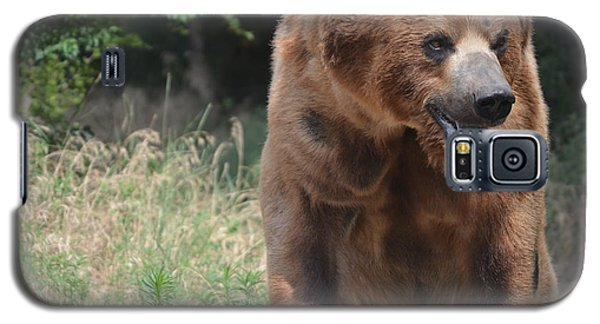 Rockstar Grizzly Galaxy S5 Case