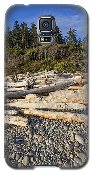 Rocky Beach And Driftwood Galaxy S5 Case