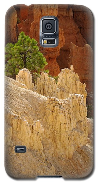Rocky Embrace Galaxy S5 Case