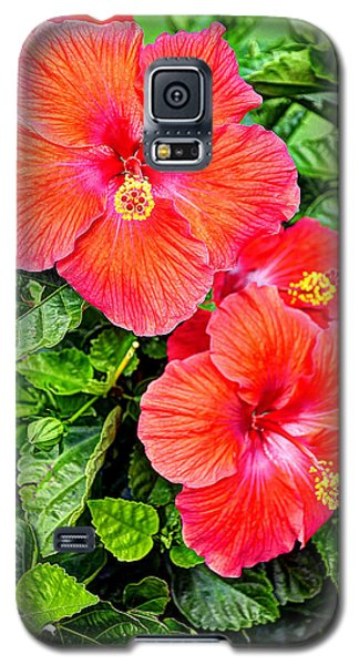 Rocky Hill Hibiscus Galaxy S5 Case
