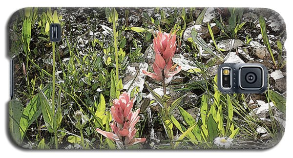 Galaxy S5 Case featuring the photograph Rocky Mountain Flora by Ann Johndro-Collins