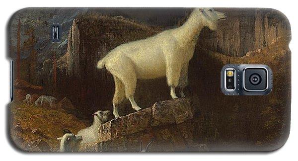 Rocky Mountain Goats Galaxy S5 Case