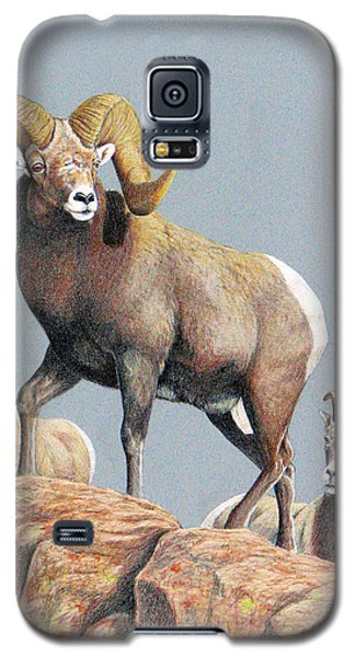 Rocky Mountain Ram Ewe And Lamb Galaxy S5 Case