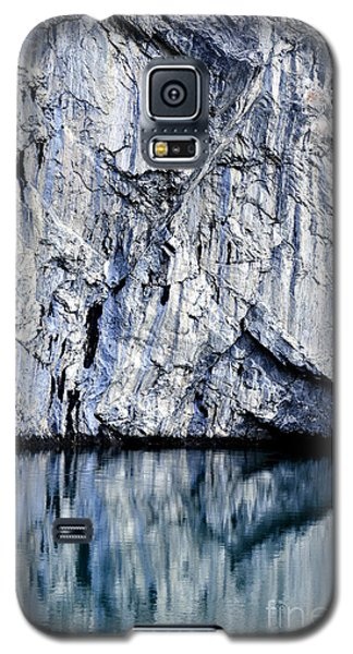 Rocky Reflection Galaxy S5 Case