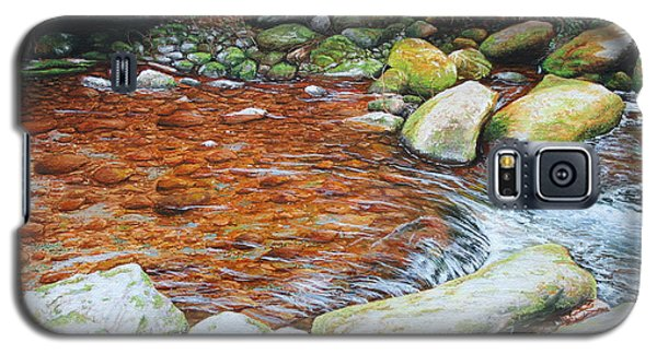 Rocky Stream Galaxy S5 Case by Mike Ivey