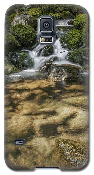 Rocky Waterfall Galaxy S5 Case