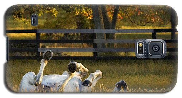 Galaxy S5 Case featuring the photograph Roll In The Hay by Joan Davis