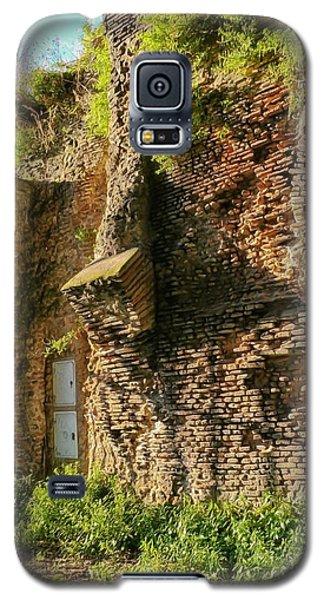 Roman Ruins 4 Galaxy S5 Case