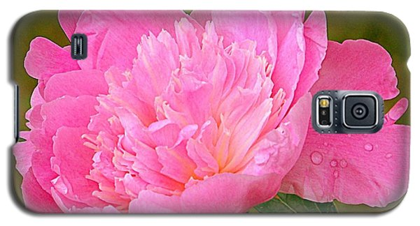 Pink Peony Galaxy S5 Case by Eunice Miller