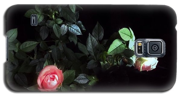 Romance Of The Roses Galaxy S5 Case by Becky Lupe