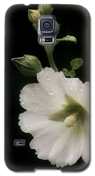 Romantic Hollyhock Galaxy S5 Case by Richard Cummings