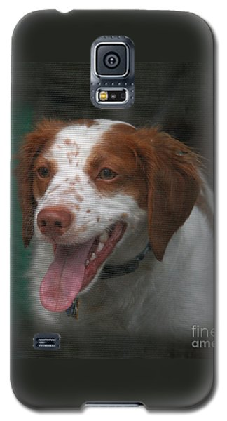 Rooney At The Back Door Galaxy S5 Case