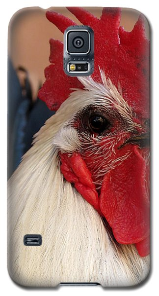 Rooster Face Galaxy S5 Case