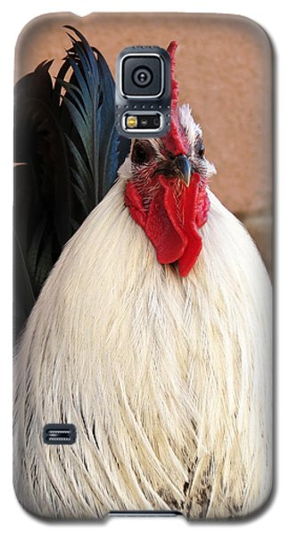 Rooster Galaxy S5 Case by Laurel Powell