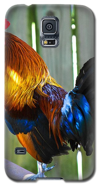 Rooster Galaxy S5 Case by Robert L Jackson
