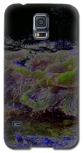 Galaxy S5 Case featuring the photograph Roots by Karen Newell