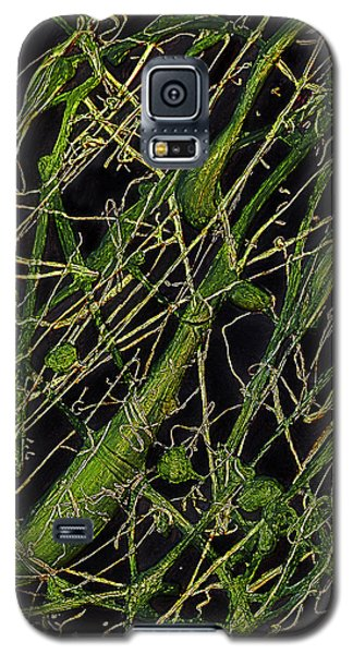 Galaxy S5 Case featuring the painting Roots by Shabnam Nassir