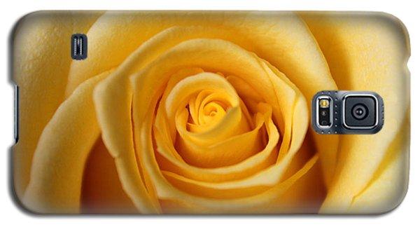 Rosa Galaxy S5 Case by Silke Brubaker