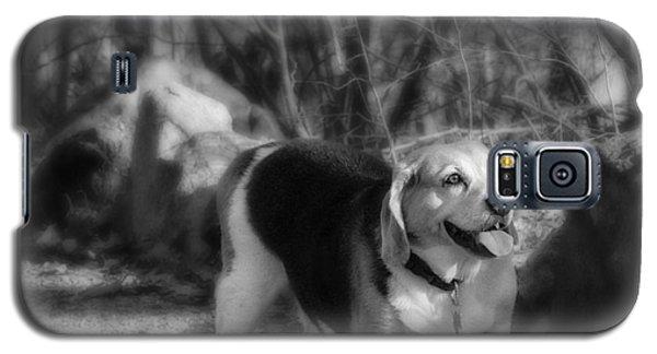 Roscoe Galaxy S5 Case
