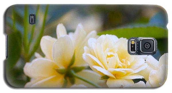 Rose 4 Galaxy S5 Case