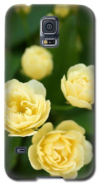 Rose 5 Galaxy S5 Case