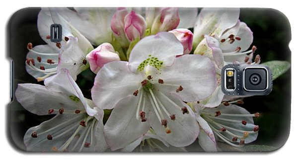 Galaxy S5 Case featuring the photograph Rose Bay Rhododendron by William Tanneberger