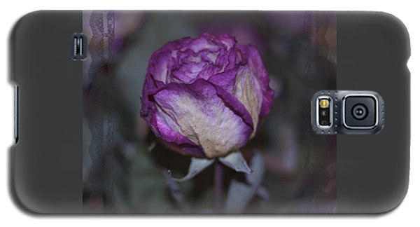 Galaxy S5 Case featuring the photograph Rose Beauty After by Sandra Foster