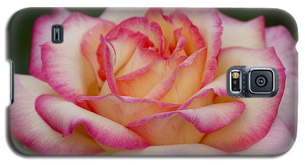 Rose Beauty Galaxy S5 Case
