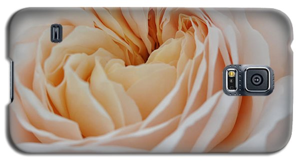 Galaxy S5 Case featuring the photograph Rose Blush by Sabine Edrissi
