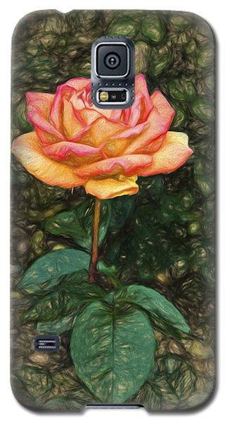 Rose Blush Galaxy S5 Case