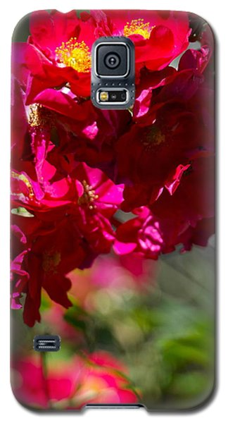 Rose Bouquet Galaxy S5 Case by Michele Myers