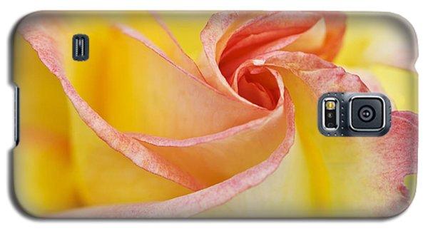 Rose Bud Opening Galaxy S5 Case