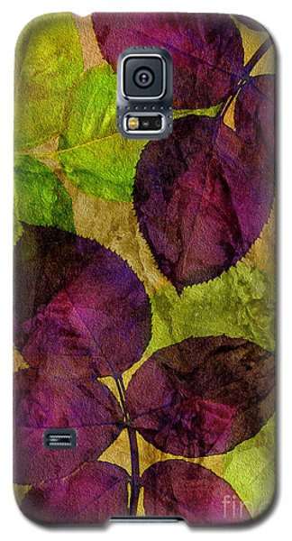 Rose Clippings Mural Wall Galaxy S5 Case