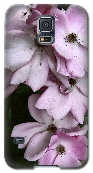 Rose Cluster Galaxy S5 Case by Louise Kumpf