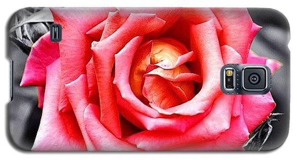 #rose #colorsplash #fiore #rosa Galaxy S5 Case