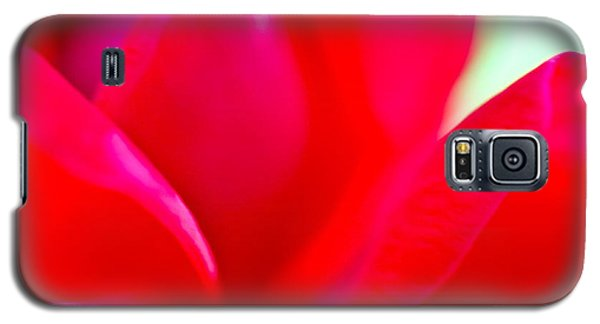 Rose Essence Study 1 Galaxy S5 Case by Cathy Dee Janes