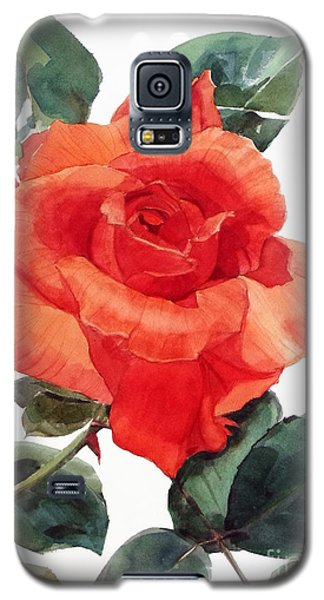 Watercolor Of A Single Red Rose I Call Red Rose Filip Galaxy S5 Case