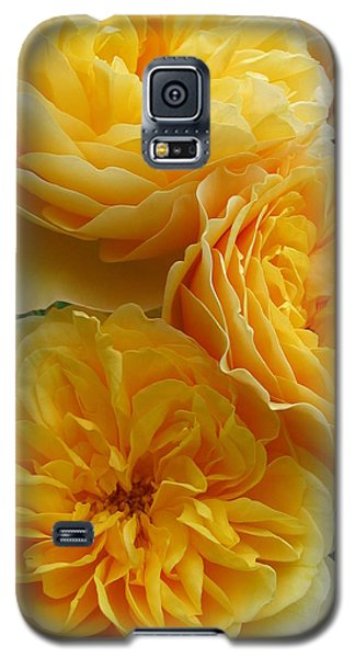 Galaxy S5 Case featuring the photograph Rose Graham Thomas by Sabine Edrissi